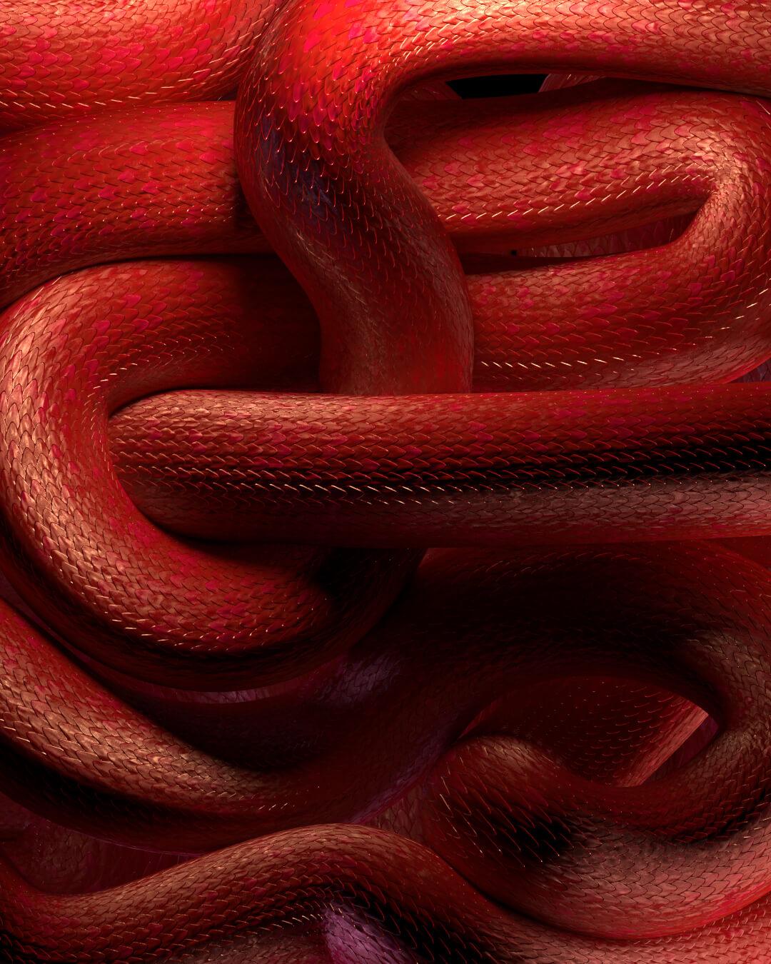 ETR_Snake_04232020_v01_Alt_0000-0-00-00-00